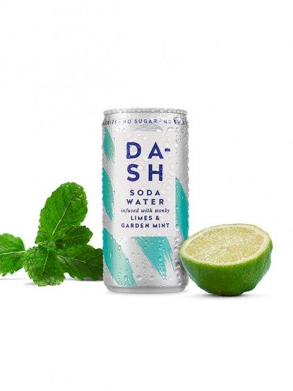 Dash mixer lime a mint green heads 1