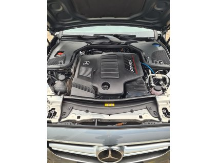 Mercedes 53 AMG 530 Package (M256)