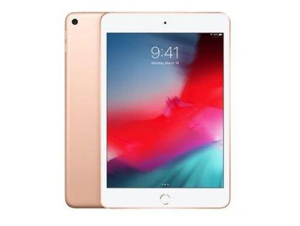 APPLE iPad mini 5 Wi-Fi 64GB Gold (muqy2fd/a)