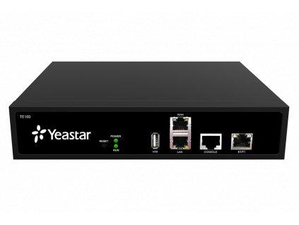 YEASTAR NeoGate TE100 (10000179)