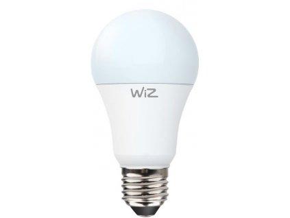 WiZ Wifi chytrá žárovka Gen 2 A60 E27 WZE20026041
