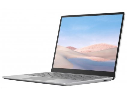 Microsoft Surface Laptop Go - Platinum (THJ-00046)