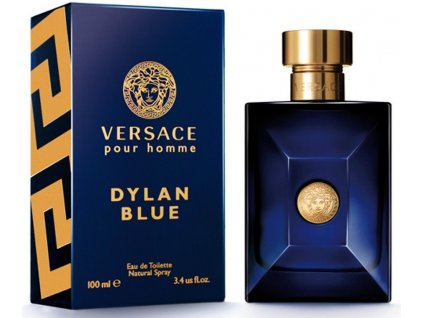 Versace Pour Homme Dylan Blue EdT 100ml - TESTER