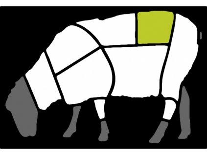 Ovečka black Hřbet