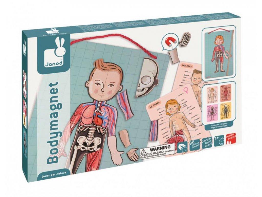 J05491 Magneticka skladacka Ludske telo svaly kostra organy Bodymagnet Janod od 7 rokov 1