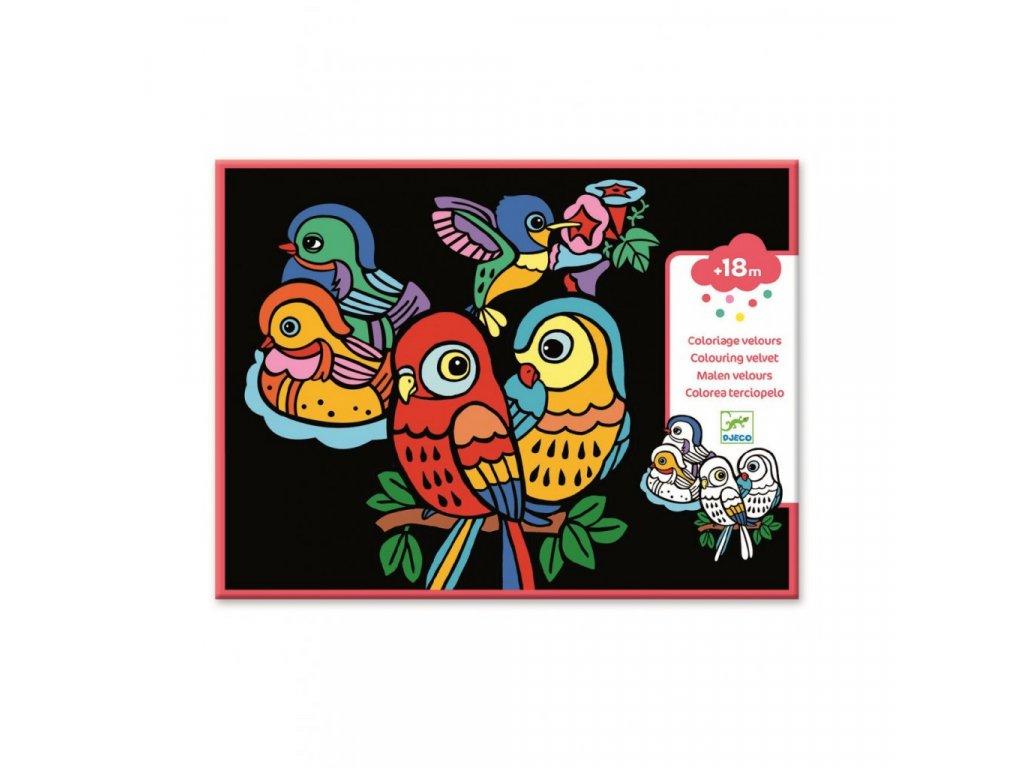3117 1 sametove malovani veseli papousci