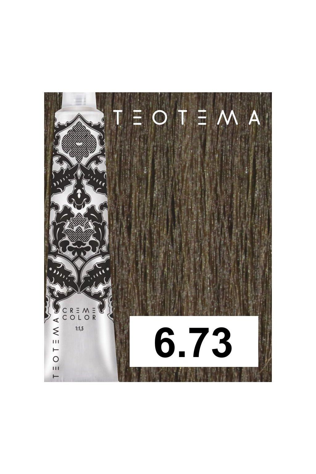6 73 teotema