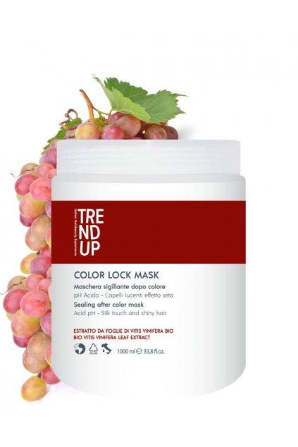 Trend up COLOR LOCK Maska pro barvené vlasy, antioxidační, prodlužuje stabilitu barvy