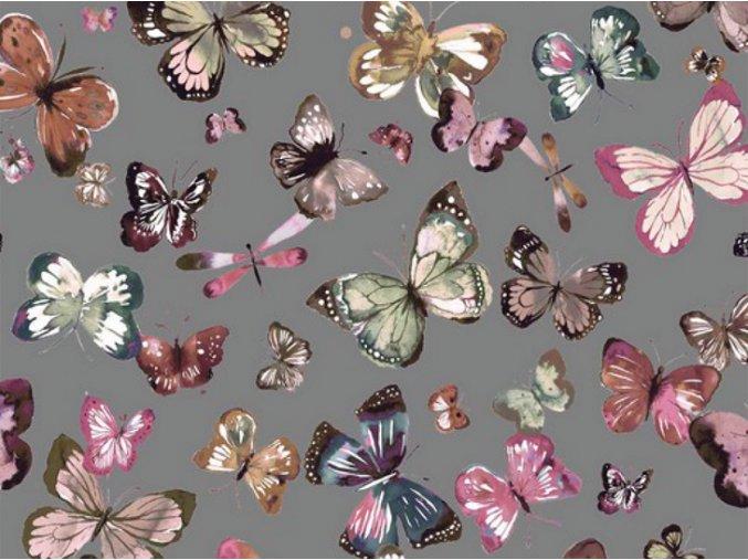 French Motýľ Seda
