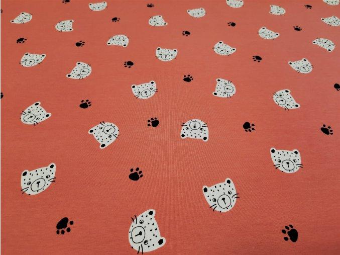 Tigrík ružový podklad