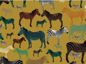 French zebra business