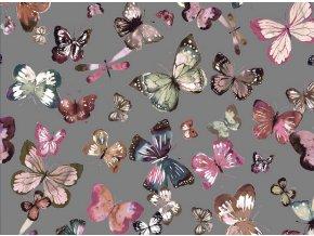 TEPLÁKOVINA - Motýle 003