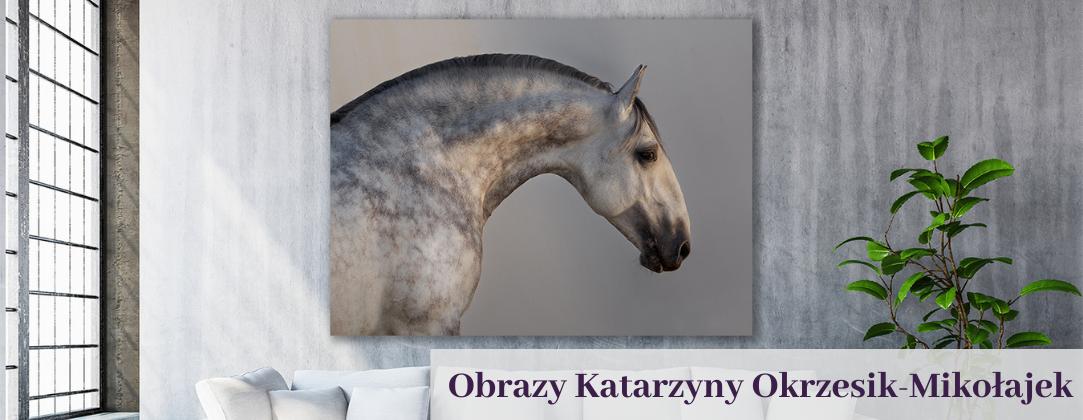 Katarzyna Okrzesik-Mikołajek