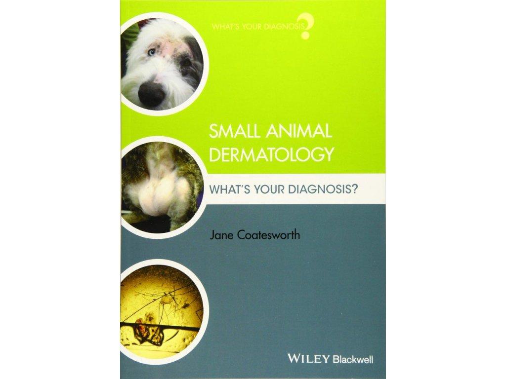1180 small animal dermatology what s your diagnosis jane coatesworth