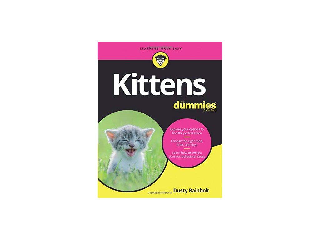 1195 kittens for dummies dusty rainbolt