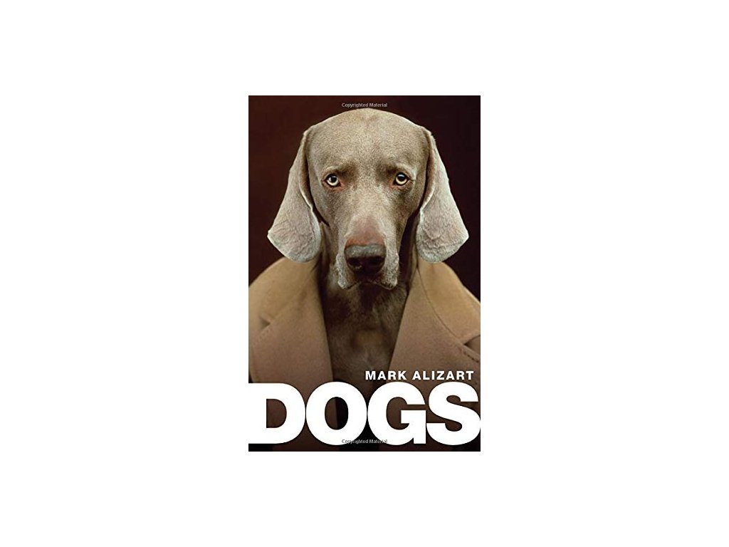 1213 dogs a philosophical guide to our best friends mark alizart