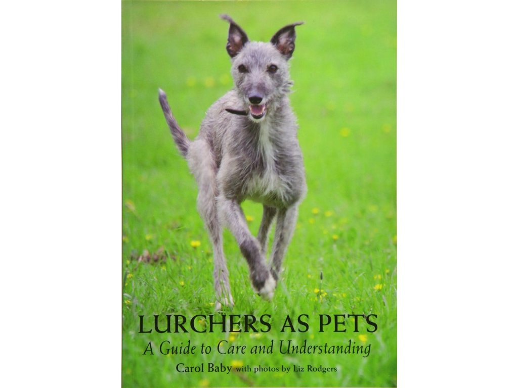 1348 lurchers as pets a guide to care and understanding carol baby