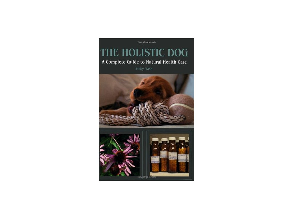 1363 the holistic dog a complete guide to natural health care holly mash