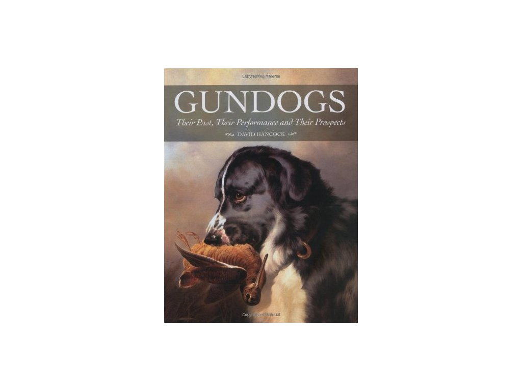 1369 gundogs their past their performance and their prospects david hancock