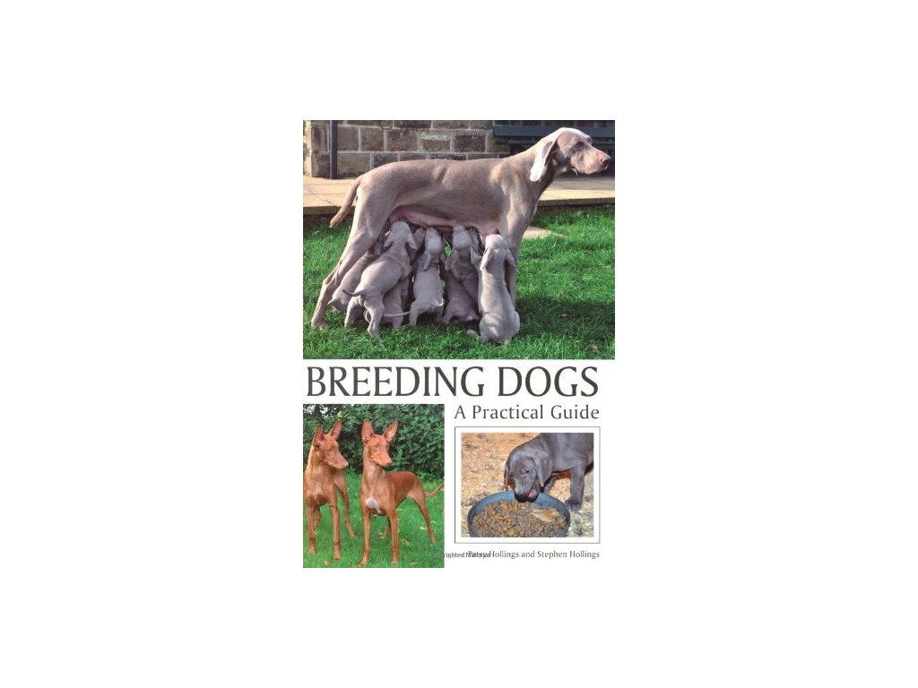1399 breeding dogs a practical guide patsy hollings