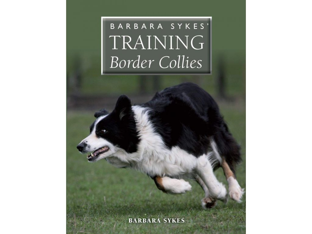 1402 barbara sykes training border collies barbara sykes