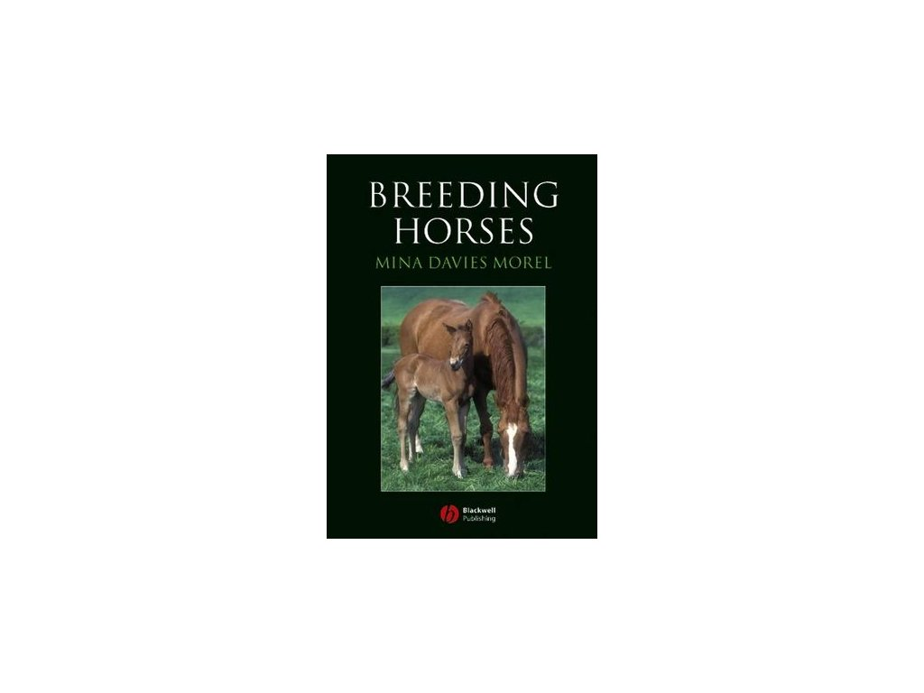 1630 breeding horses mina davies morel
