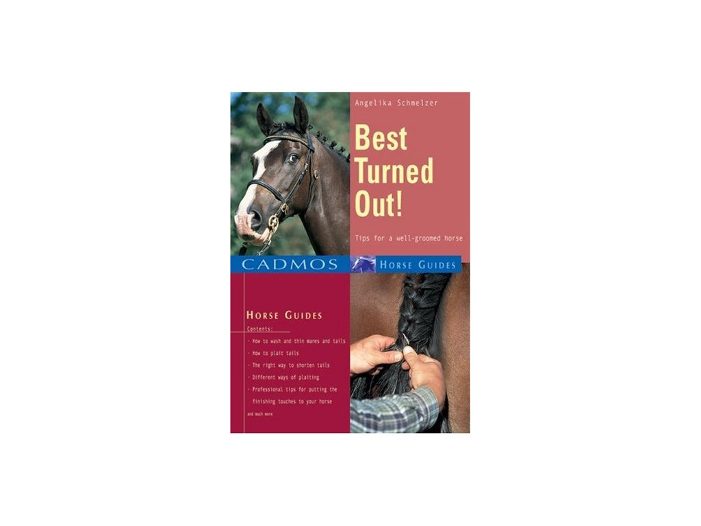 1699 best turned out tips for a well groomed horse angelika schmelzer