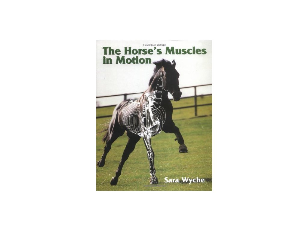 1987 the horse muscles in motion sara wyche