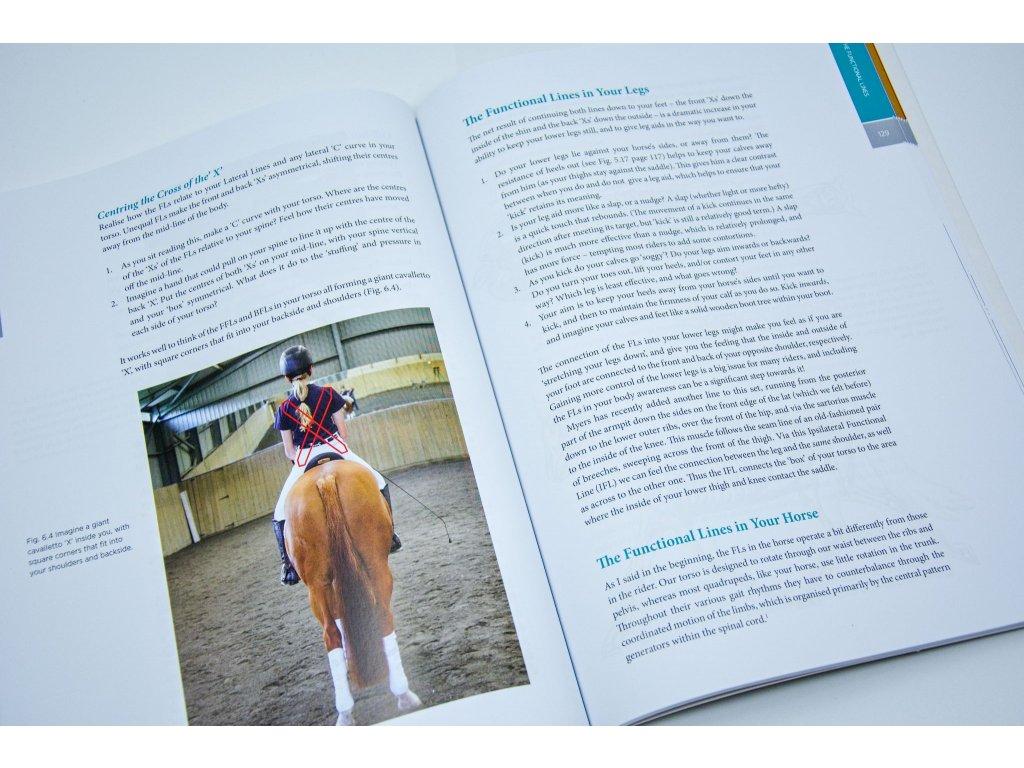 2281 rider biomechanics mary wanless
