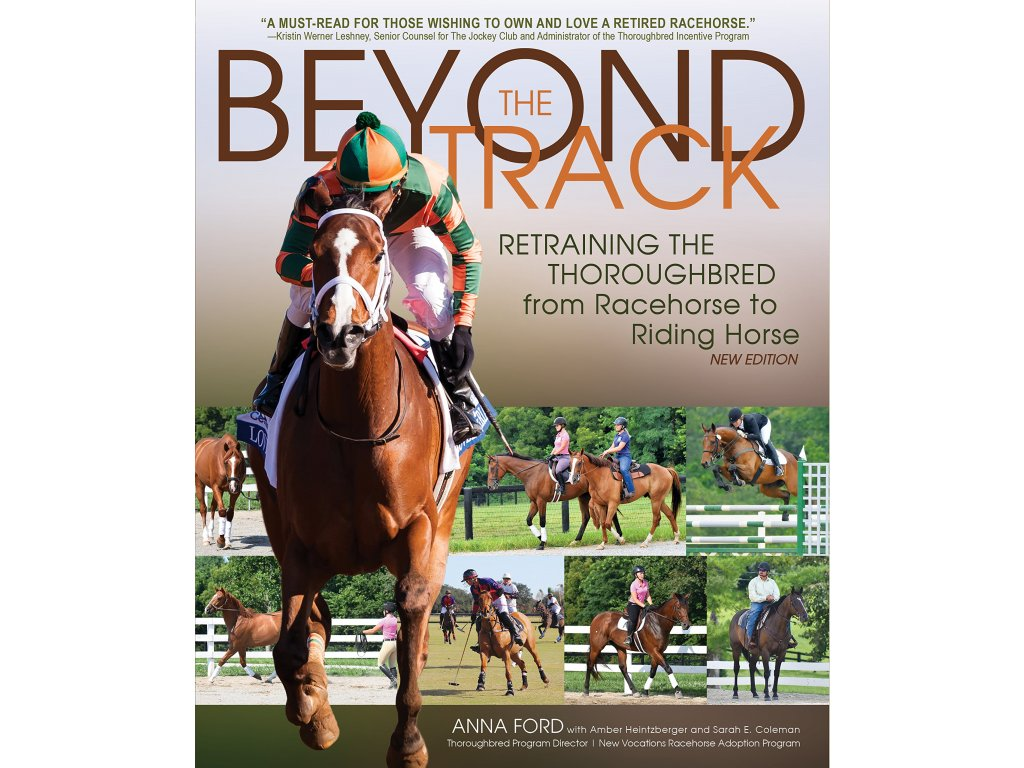 2311 beyond the track retraining the thoroughbred from racecourse to riding horse anna morgan ford