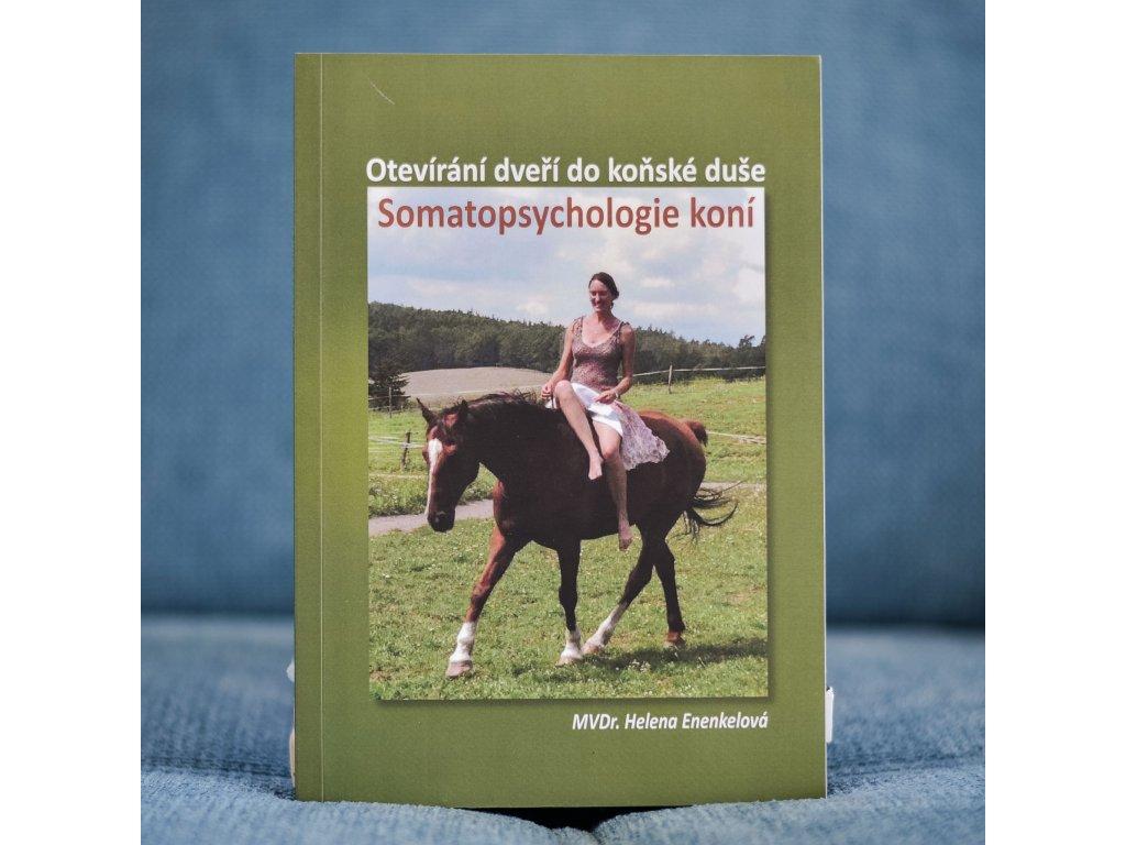 somatopsychologie koni helena pokorova