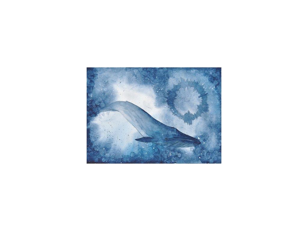 Obr. 19 – 52Hertz whale A5 (Rozměr A3)