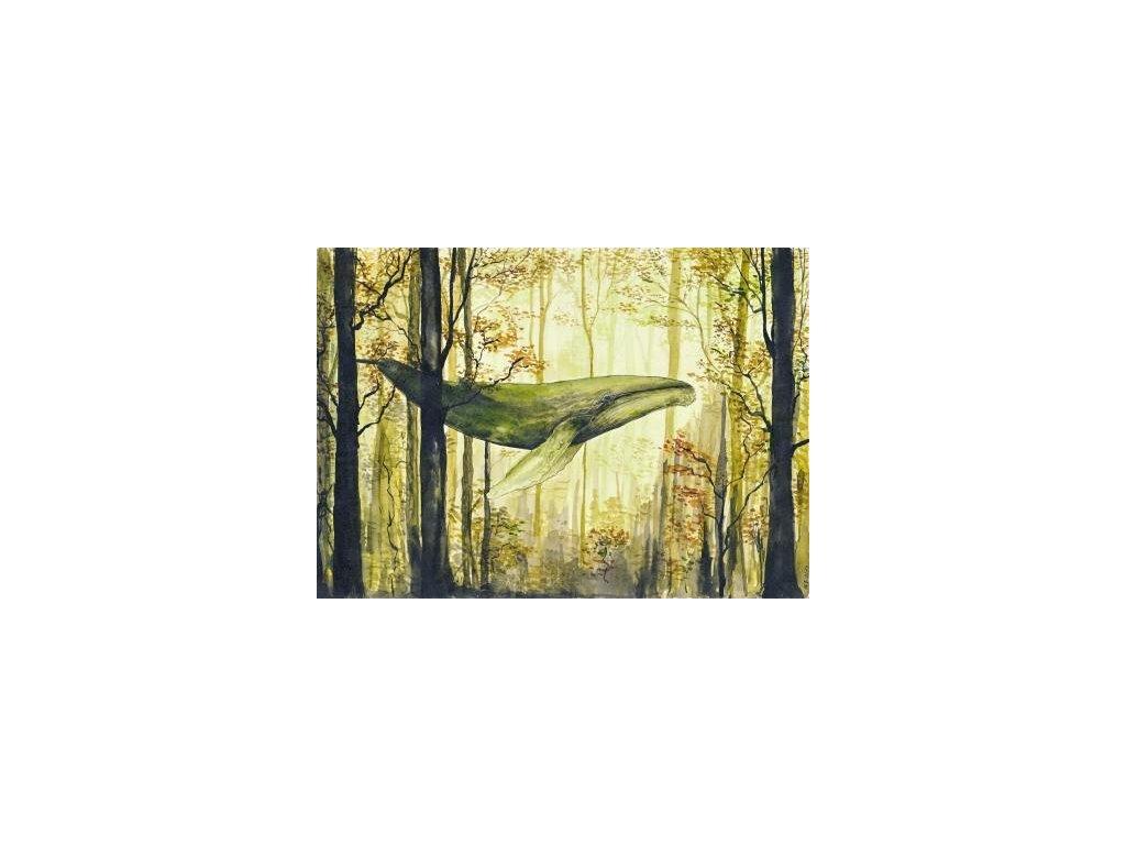 Obr. 18 – Lesní zvěř A4 (Rozměr A3)