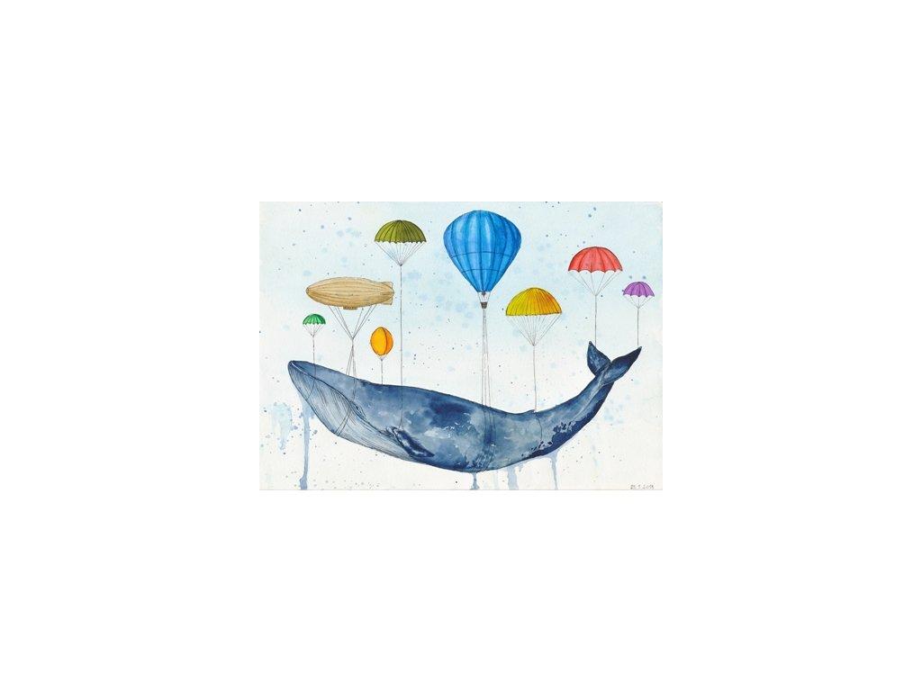 Obr. 16 – Balónová evakuace A4 (Rozměr A3)