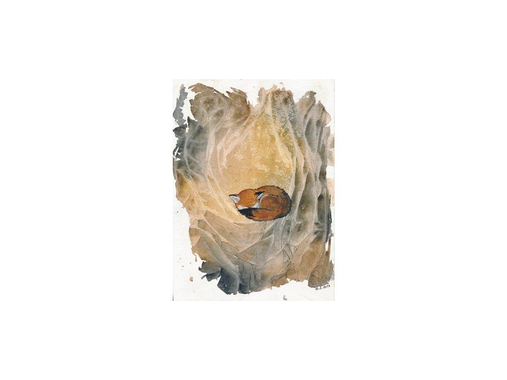 Obr. 8 – Liška v noře A5 (Rozměr A4)