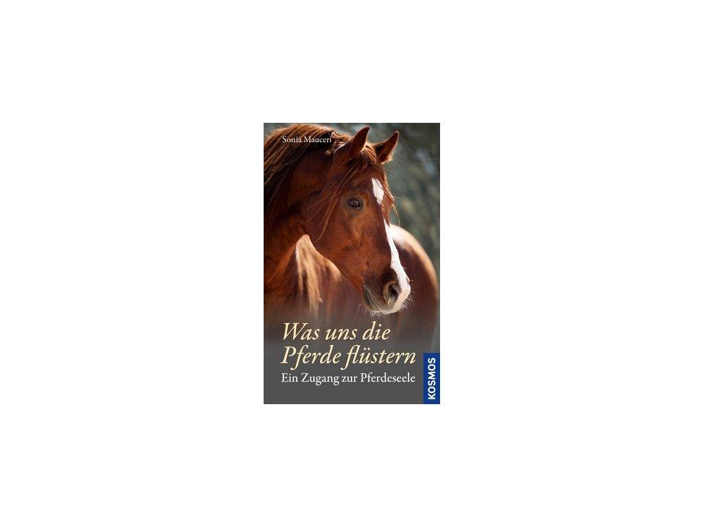 Was uns die Pferde flüstern