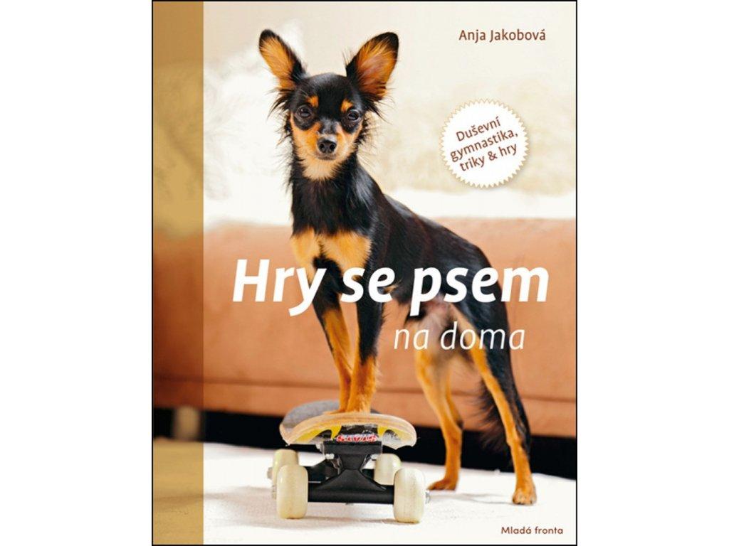 Hry se psem na doma