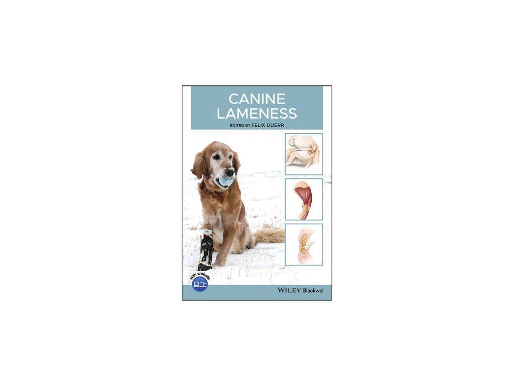Canine Lameness