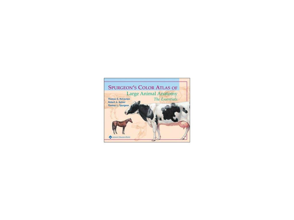 Spurgeon's Color Atlas of Large Animal Anatomy The Essentials