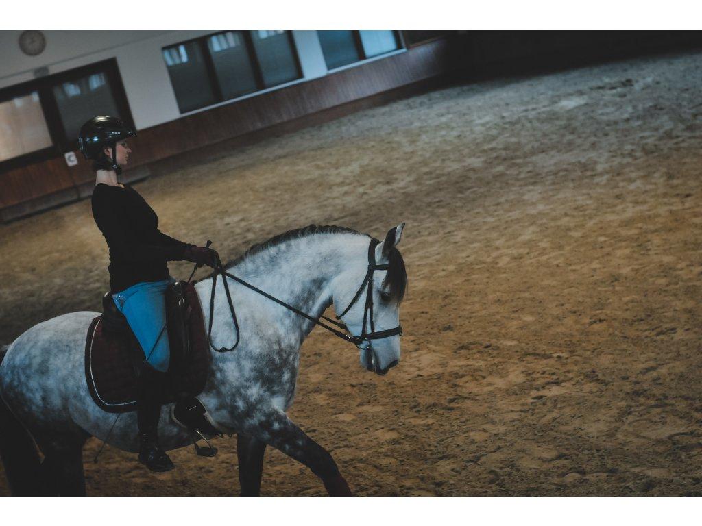 Soustředění VFU Brno, 21. 8. 2021 – účast s koněm