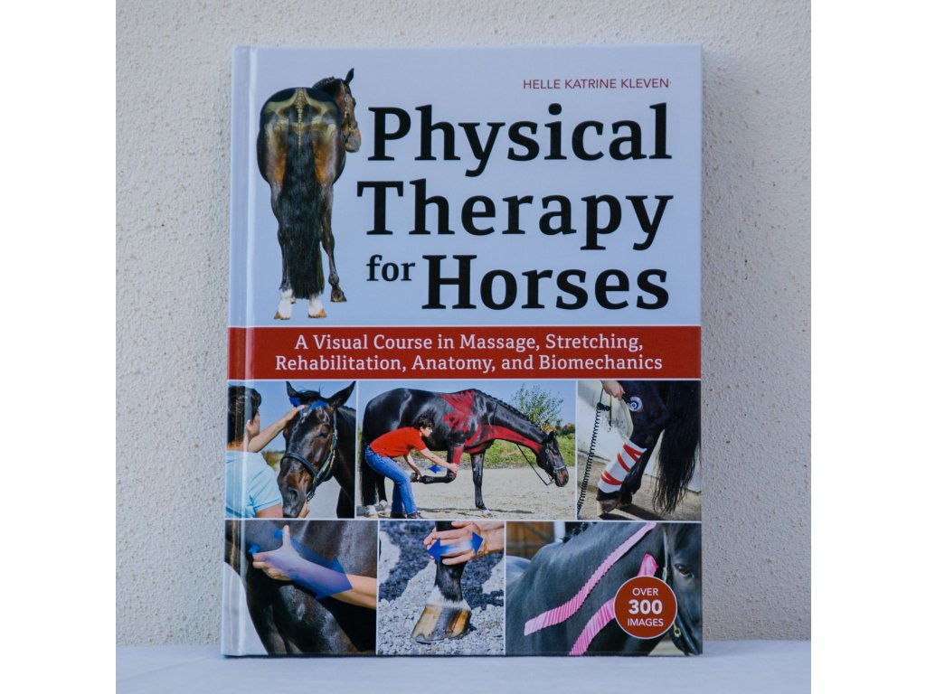 physical therapy for horses helle katrine kleven