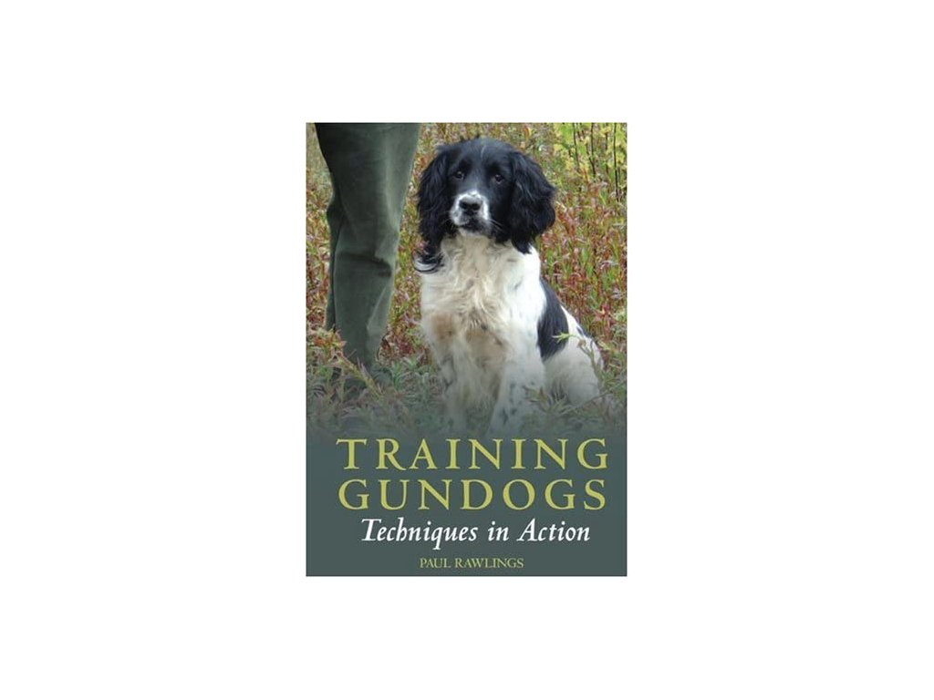 85 dvd training gundogs techniques in action paul rawlings