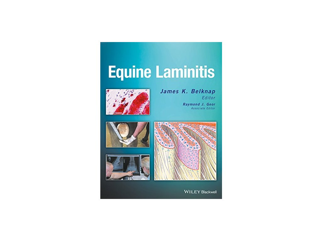 958 equine laminitis james k belknap raymond j geor