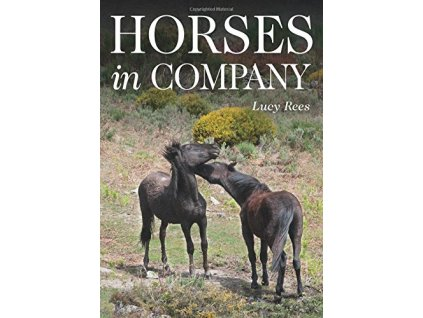1441 horses in company lucy rees