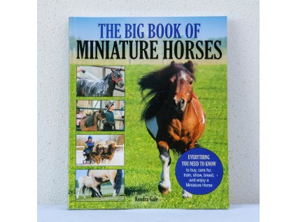 corrective exercises for horses jec aristotle ballou