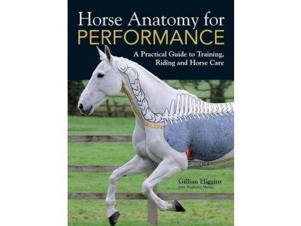 2206 horse anatomy for performance gillian higgins