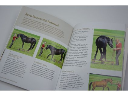 the handy book of horse tricks sigrid schope