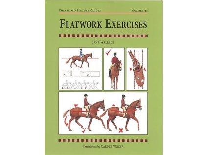 247 flatwork exercises jane wallace