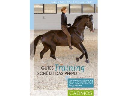 gutes training schuetzt das pferd