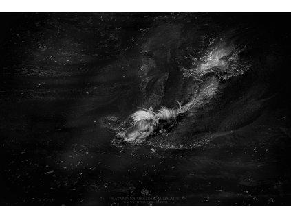 Mermaid's dream 30 x 45 cm (Rozměr 100 x 150 cm)